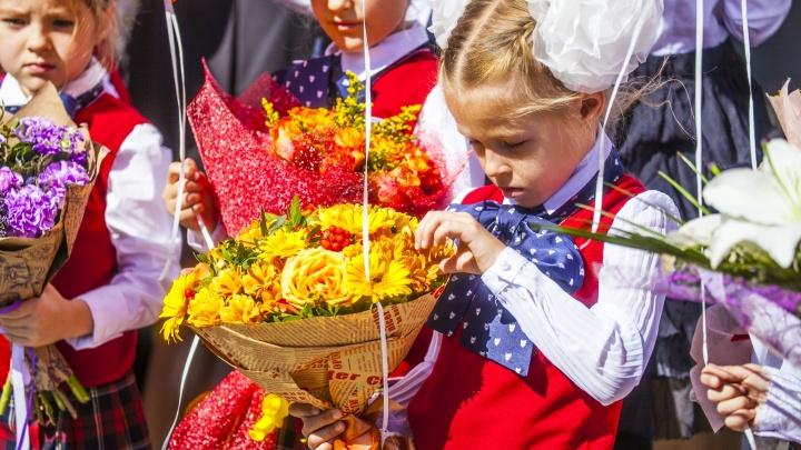 В школы Новосибирской области записали на 2 тысячи больше первоклассников