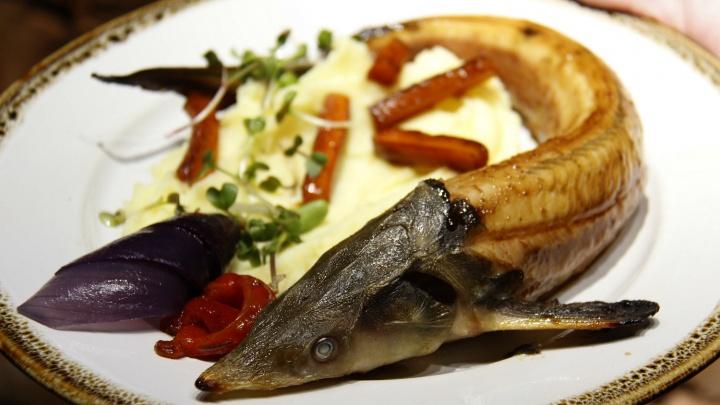 Семейная пара откроет рыбный ресторан, где кормят только сибирскими судаками, стерлядью и форелью