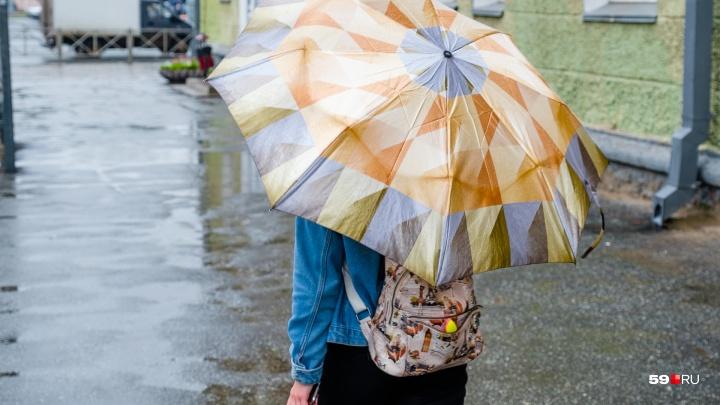 Сильные дожди вернутся в Прикамье в начале недели