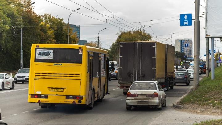 Расплодили тут автобусов: новые выделенки — водители их проклинают, а пассажиров они не спасают