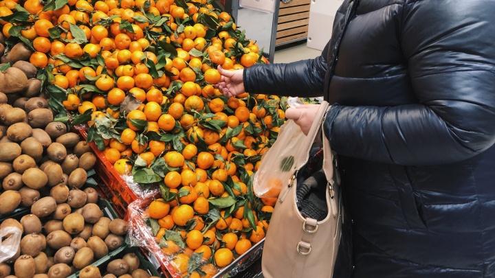 Смотрим, где в Самаре можно купить свежие мандарины и дешевые ёлки к Новому году