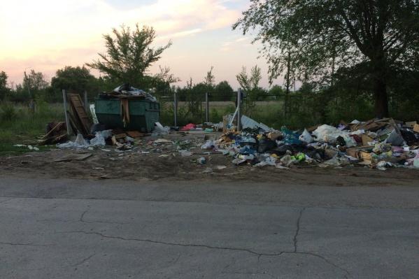 Бытовые отходы складировали рядом с контейнерами