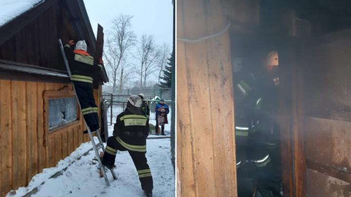 Во время пожара вБольшереченском зоопарке отравился дымом страус