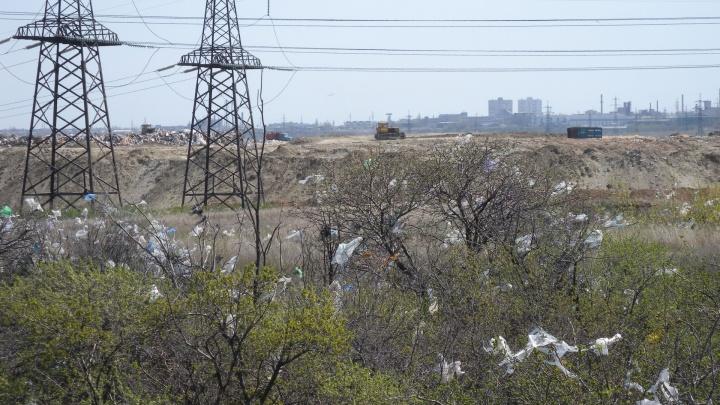 Мусорный полигон в Гумраке угрожает прикормленными птицами аэропорту Волгограда