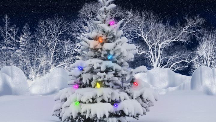 Традиционная «Зимняя ночь распродаж» подарит скидки до 60% на товары для спорта и активного отдыха