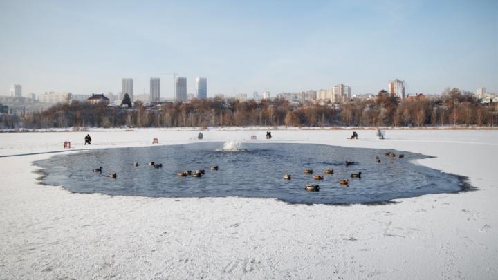 Реки Башкирии покроются льдом к концу недели