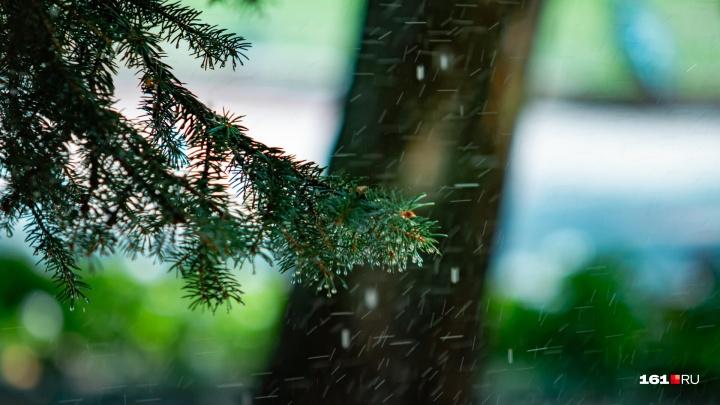 Череда дождей: какая погода ожидает ростовчан на ближайшей неделе
