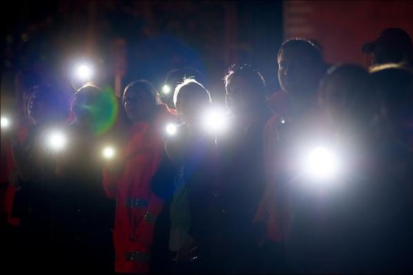 Волонтёры «Лиза Алерт» получают по несколько сообщений о пропавших грибниках в день