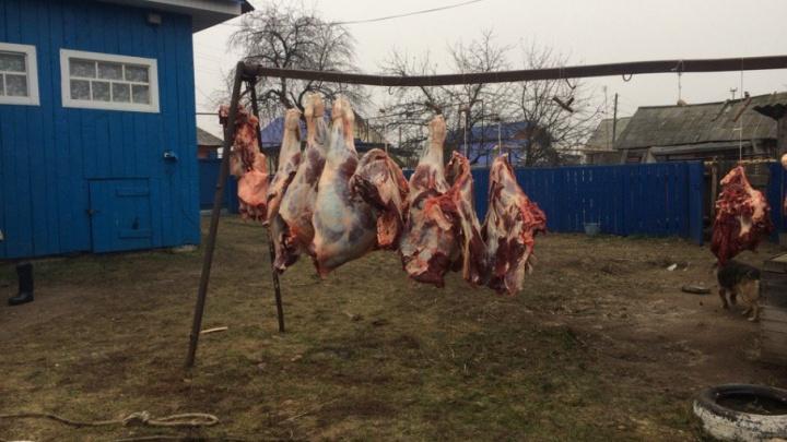 В Уфе пройдут традиционные сельхозярмарки
