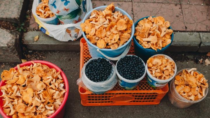 «Никогда не покупаю ничего на улице». Одиннадцать мнений тюменцев о стихийных рынках овощей и ягод