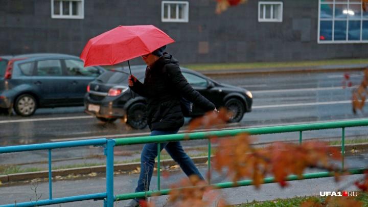 В МЧС Башкирии предупредили, что завтра из дома лучше не выходить