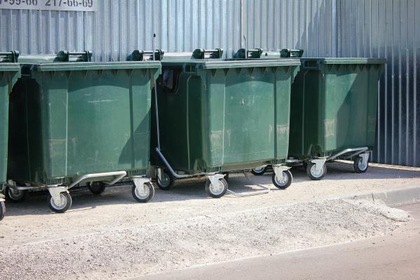 Раздельный сбор мусора начнут вводить со следующего года