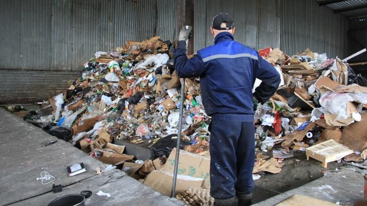 «С Поморьем никто не хочет работать»: эксперт Greenpeace — о провале «мусорной реформы»