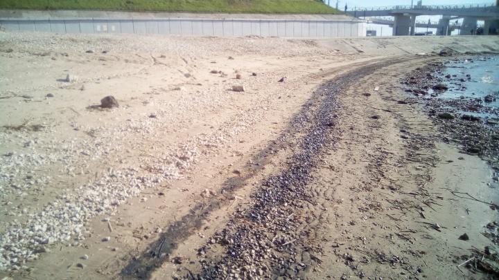 Самарский пляж «пропитало» мазутом