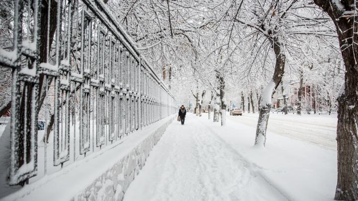 Готовьте лопаты: в Новосибирск идет мощный снегопад