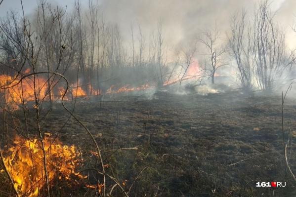 Природные пожары в регионе вспыхивают каждое лето