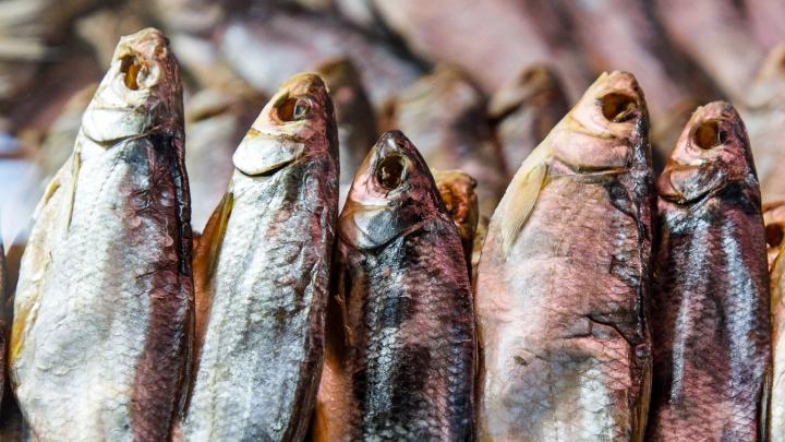 Рыба моей мечты: как выбрать самых вкусных донских«королей» на волгоградских рынках