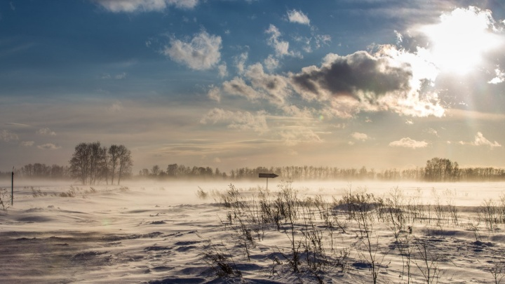 Слабые снежинки и туманы: новосибирцы дождались спокойной погоды с умеренными морозами