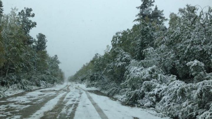 Доставайте валенки: на севере Свердловской области выпал снег