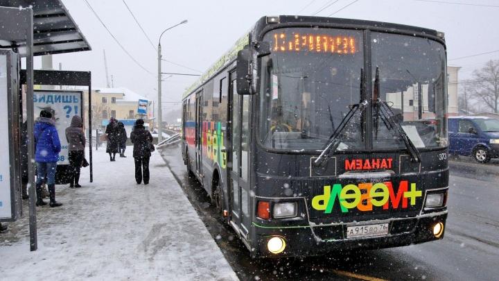 Перекроят транспортную схему: в Ярославле сделают три типа маршрутов