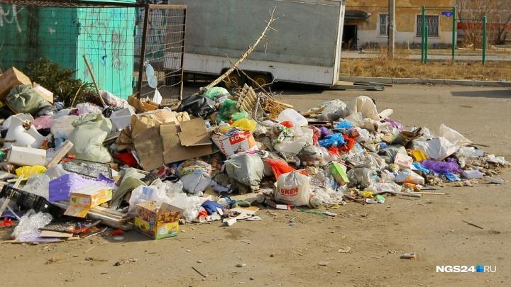 Только треть красноярцев готовы сортировать мусор