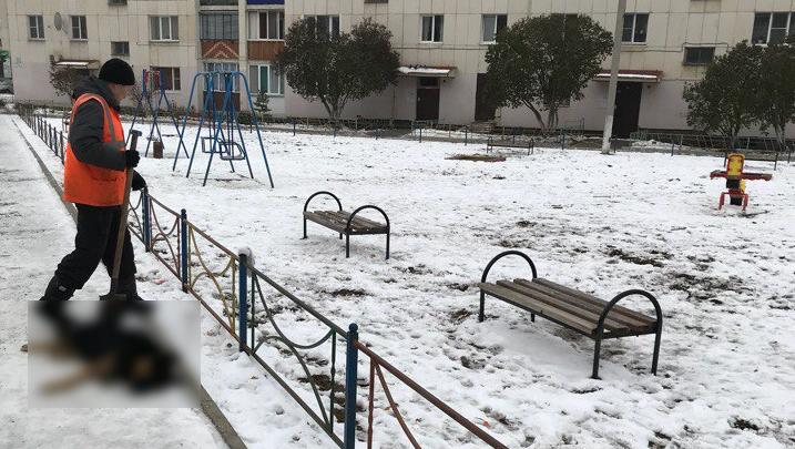 В Башкирии на глазах у детей отстреливали собак