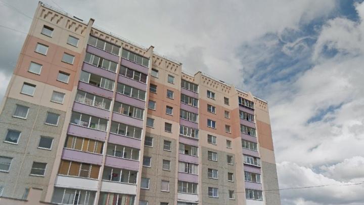 «Сами спровоцировали»: собака разодрала хозяина в спальном микрорайоне Челябинска