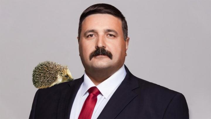 Чиновником из Ярославской области, предложившим разводить ежей, заинтересовались следователи