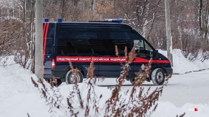 СК проверит пермских врачей после смерти 11-летнего мальчика, отравившегося в кафе