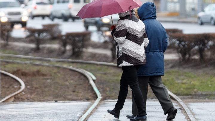 Осадков мало не бывает: Волгоградская область получит коктейль из дождя, снега и крепкого ветра