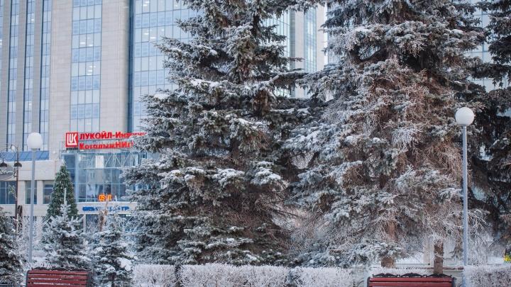 Морозы в Тюмень принес антициклон. Эксперт рассказал, какую погоду ждать дальше и когда же потеплеет