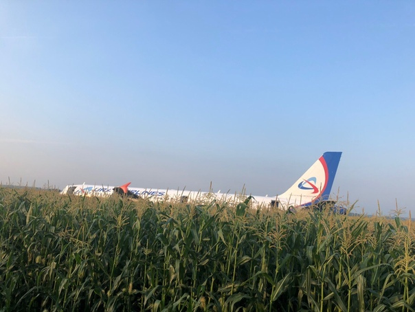 Командир Airbus A321 Дамир Юсупов  рассказал, как ему удалось посадить самолет