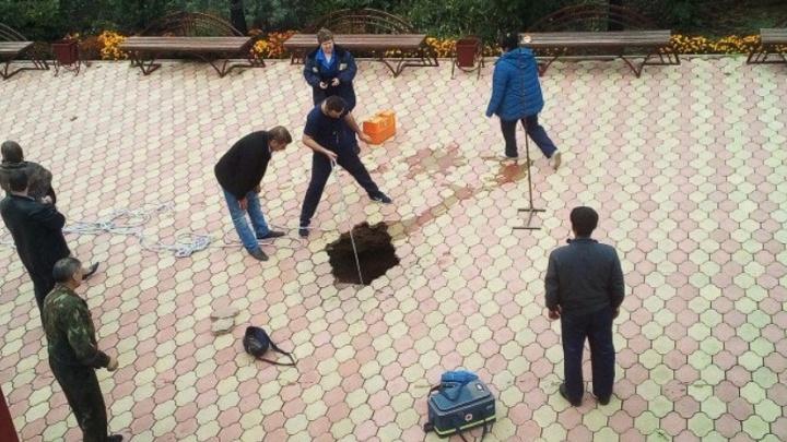 Миллион и условный срок: в Викулово осудили директора школы, где провалился в яму и погиб ребенок