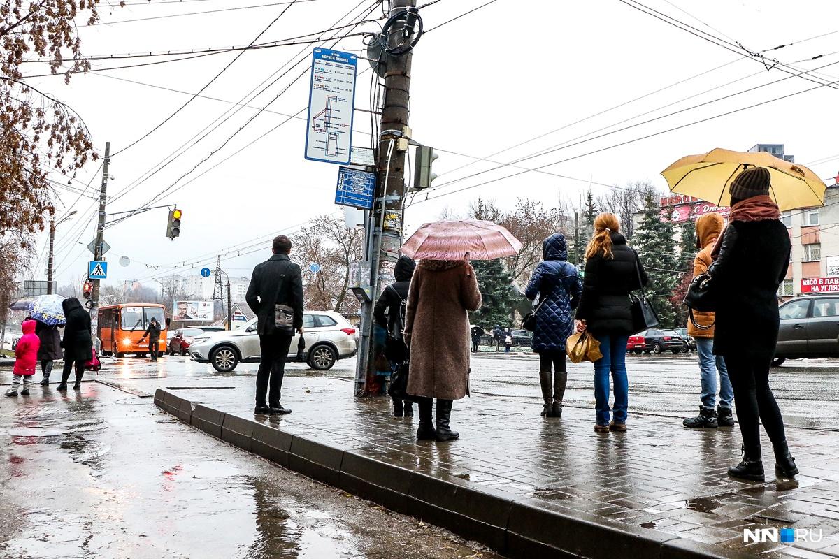 ВНижегородской области 21ноября ожидаются сильные осадки— МЧС