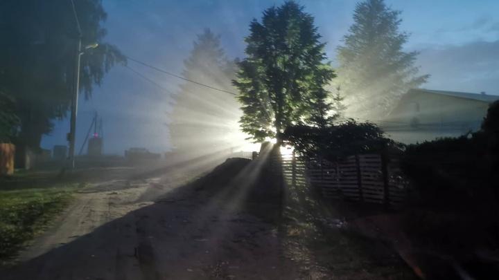 И лампа не горит: несколько ярославских деревень на полгода оставили без света