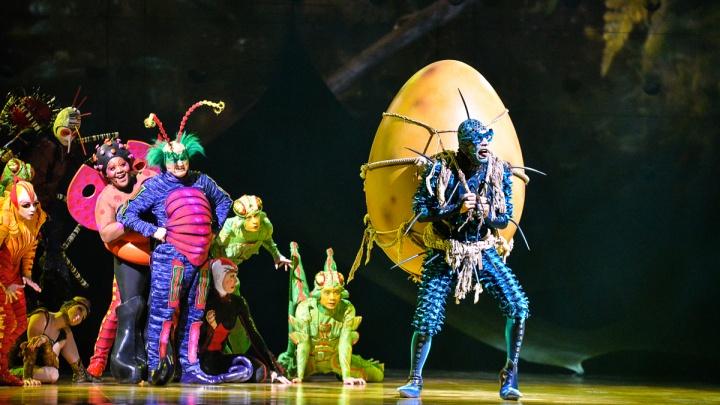 Жуки-акробаты и паук-канатоходец: 50 ярких фото шоу Цирка дю Солей в Екатеринбурге