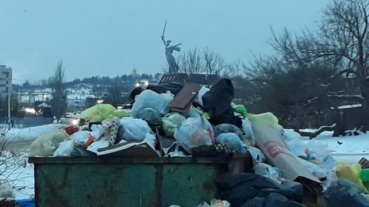 «За областным судом в полный рост ходят крысы»: экологи написали жалобы на мусорного концессионера