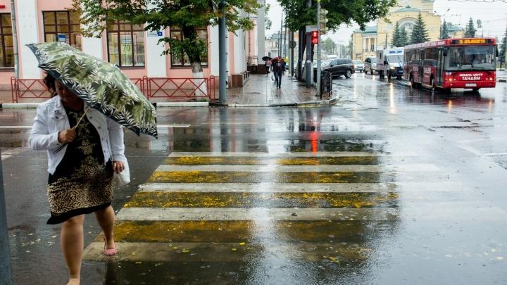 Циклон к нам смещается очень быстро: как долго будет бушевать гроза в Ярославле