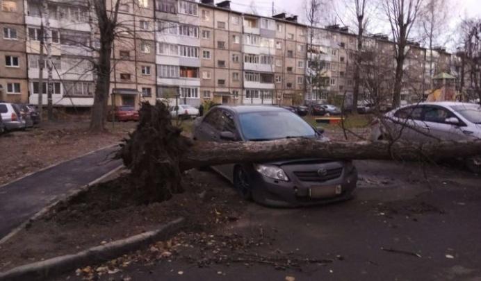 Сегодня на Ярославль обрушится шторм: когда ждать удара стихии