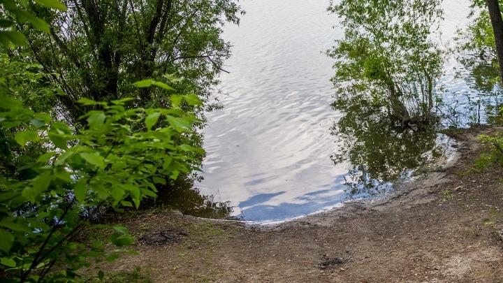 Пятилетняя девочка на велосипеде скатилась в пруд и утонула (обновлено)
