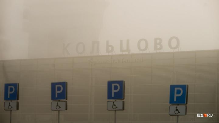 В Кольцово из-за тумана не могут сесть самолеты