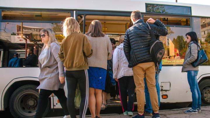 В Самаре отменят автобусные перевозки до дач