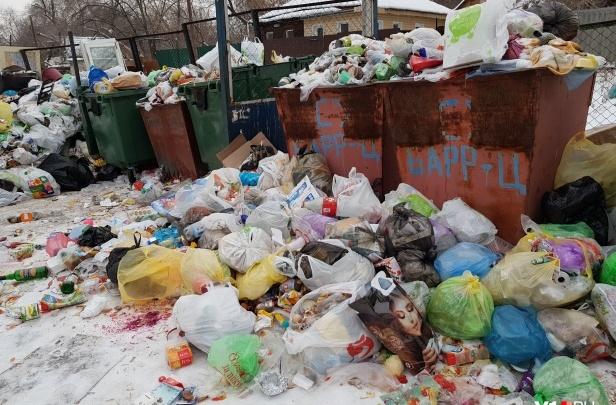«Предупредили»: волгоградских участников антимусорного протеста пожурили перед Всероссийской акцией