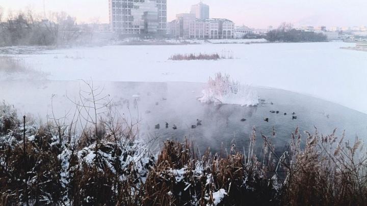 Буря в Бакале, замерзающий японец и массовые ДТП: Челябинск пережил третий день сильных морозов