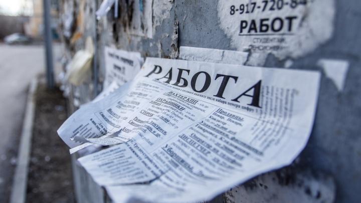 Минус 6400: в Волгоградской области занятость населения сократилась до 55%