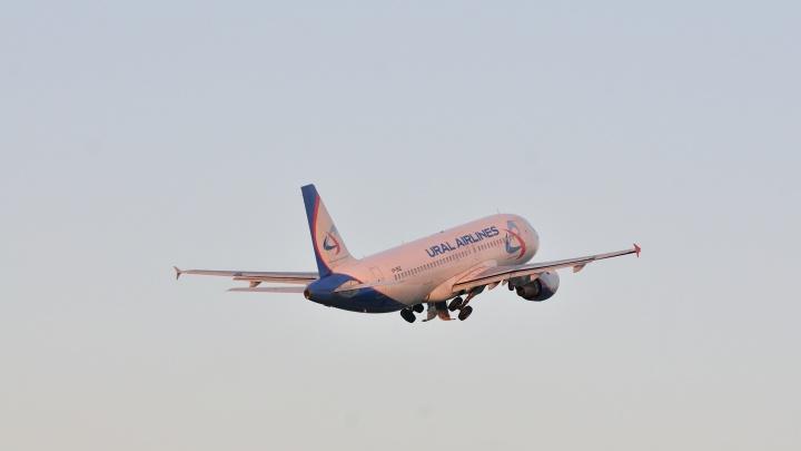 Пилоту «Уральских авиалиний» пришлось посадить самолет, летевший в Дубай, из-за пьяной пассажирки