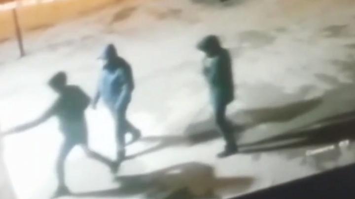 В Башкирии нашли хулиганов, расстрелявших работников ночного клуба