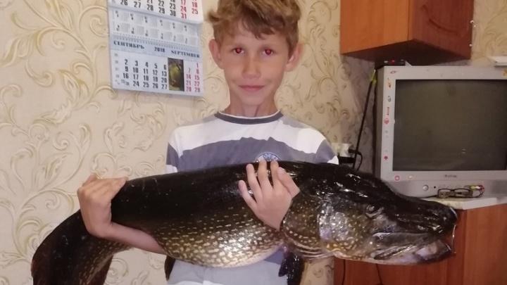 Под Сызранью девятилетний мальчик поймал огромную щуку