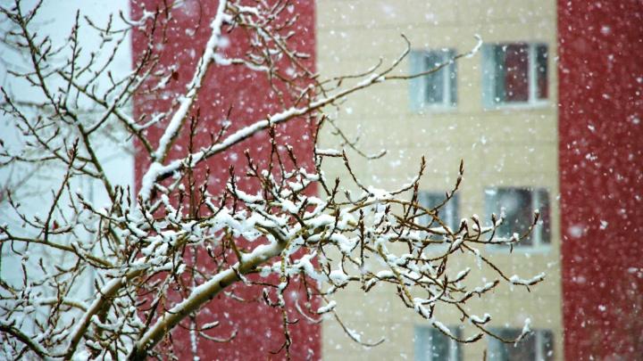 Омичей предупредили о снегопаде и похолодании