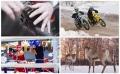 Выходные в Нижнем Новгороде: с мотогонками, боксом и электронной музыкой